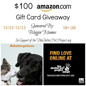 Flash Giveaway in Support of The Shelter Pet Project -- Win a $100 Amazon Gift Card!