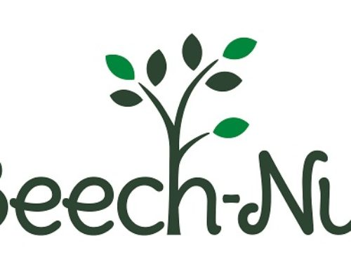 Paid Ambassador Opportunity with Beech-Nut for Mamas in Houston & San Antonio